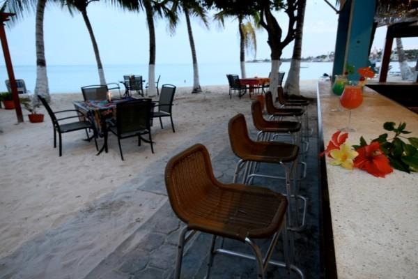 Bar Playa Fuente cocoplumhotel com